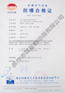 250W合格证